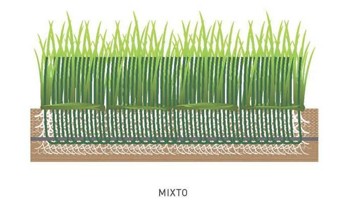cesped-mixto-06
